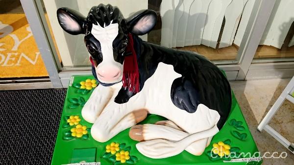 ヤスダヨーグルトにいる牛